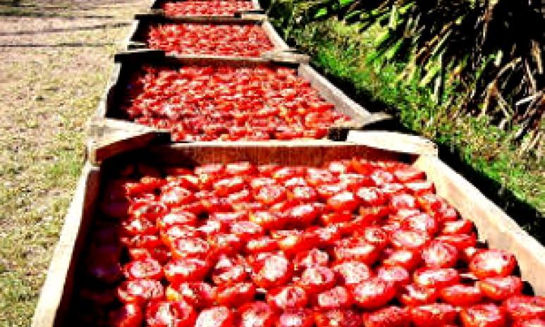 Zongedroogde tomaten Grand'Italia
